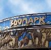 Зоопарки в Высоковске